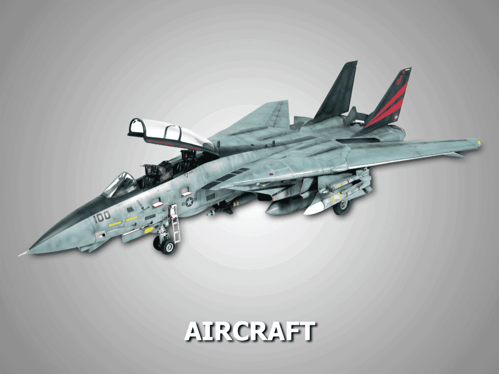custom aircraft model